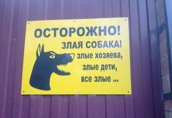 Картинки по запросу Смешные вывески  о злых собаках