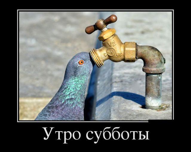 http://image1.thematicnews.com/uploads/images/00/00/39/2017/11/28/5255e6c166.jpg