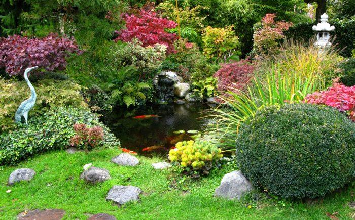 Идеи оформления водоёма в саду