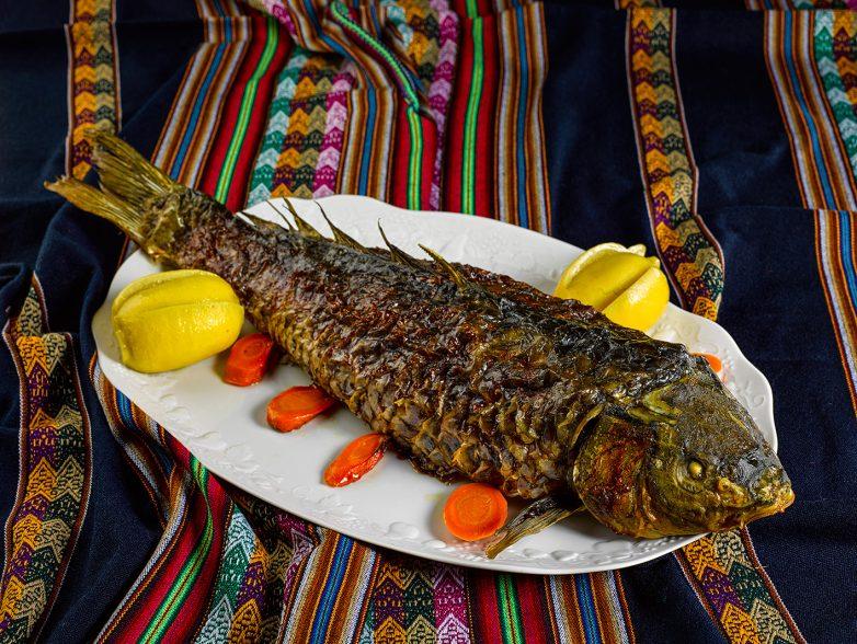 рецепты блюд из рыбы сазан,толстолобик,щука,змей голова,белый амур