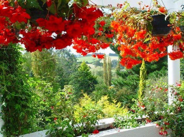 Идеи и советы при озеленении балкона