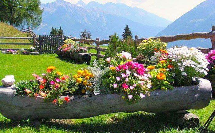 Украсить двор цветами фото