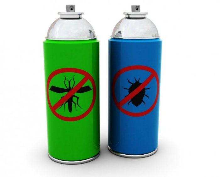 for Casa del insecticida