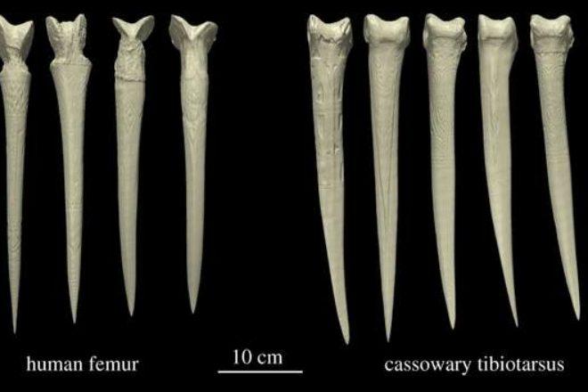 Жуткая находка испугала археологов