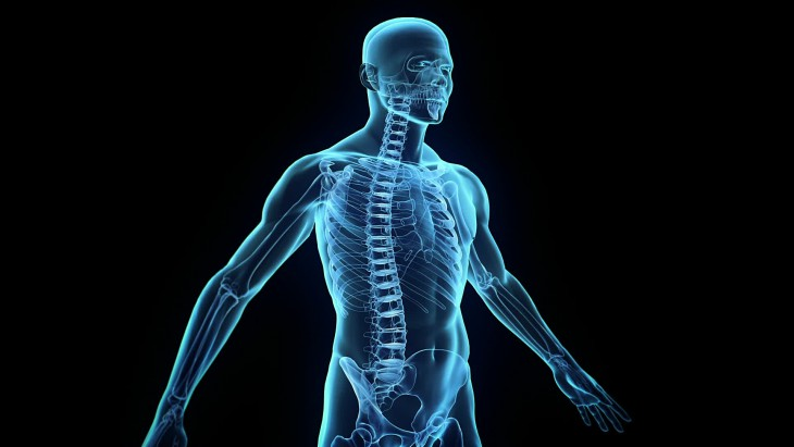effects of overtraining on humans body and mind Benefits of exercise on the human body physical of injury and overtraining exercise has a beneficial effect on the human immune system while.