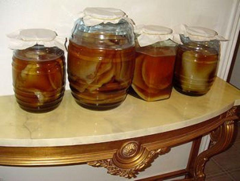 Можно ли вырастить чайный гриб с нуля