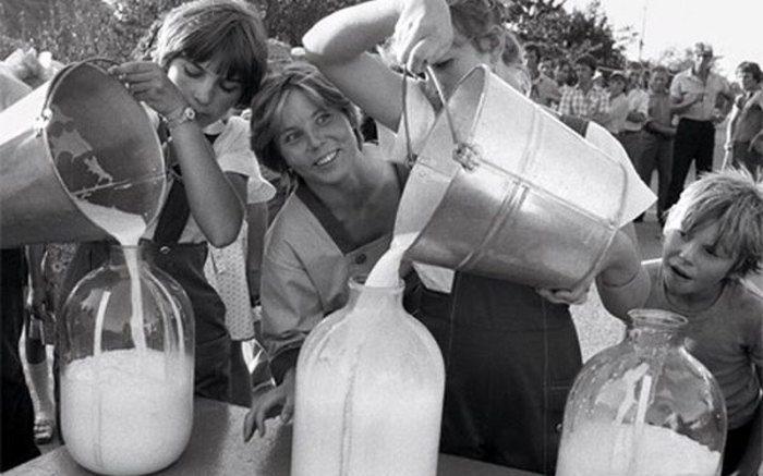 Почему советское молоко прокисало быстро, а в российское хранится месяцами?
