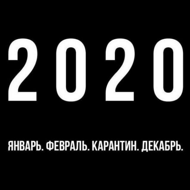 Лучшие мемы 2020 года