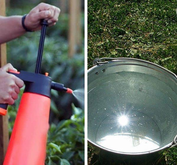 Применение нашатырного спирта в садоводстве
