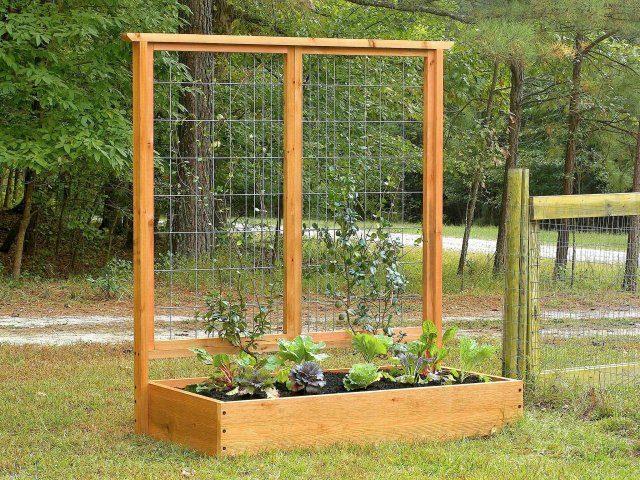 Идеи опор для растений, которые можно сделать своими руками
