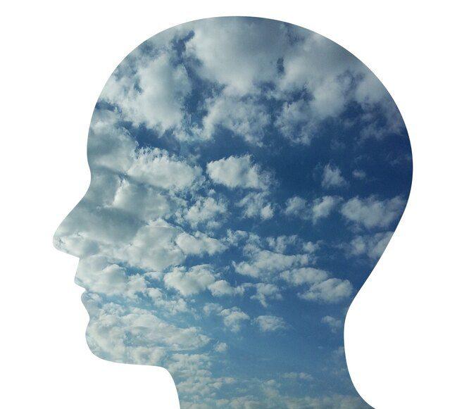 Вопрос на засыпку: что такое сознание и как оно работает?