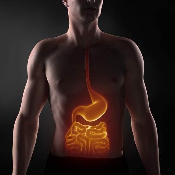 Признаки недостатка серы в организме