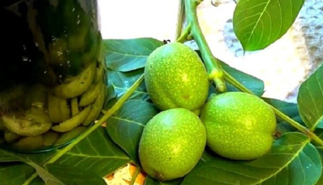Лекарство из зелёного грецкого ореха
