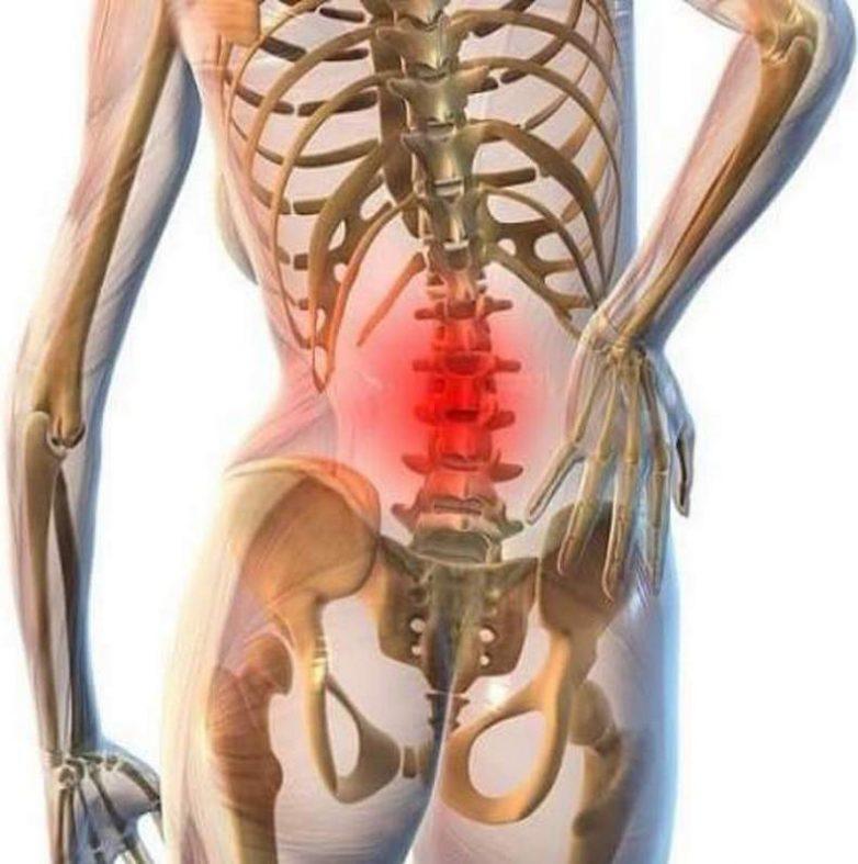 Упражнения для поясницы, которые избавят от боли без лекарств