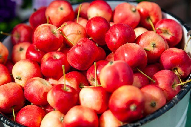 Чем грозит чрезмерное потребление яблок