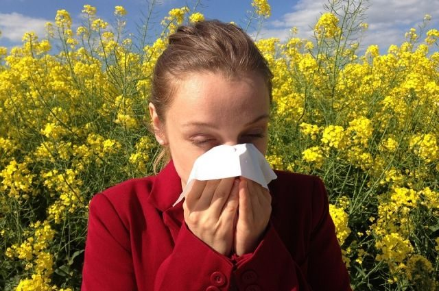 Что такое сенная лихорадка и как ее распознать?