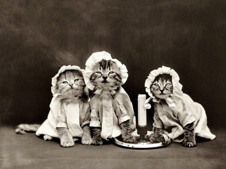 Изумительные архивные фотографии. Браво!