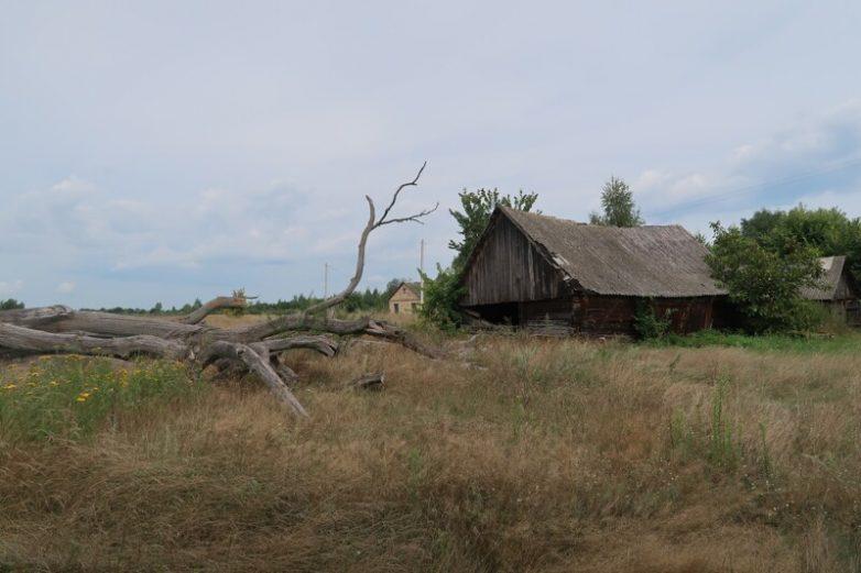 Уходящая деревня: Белорусское Полесье, Кудричи