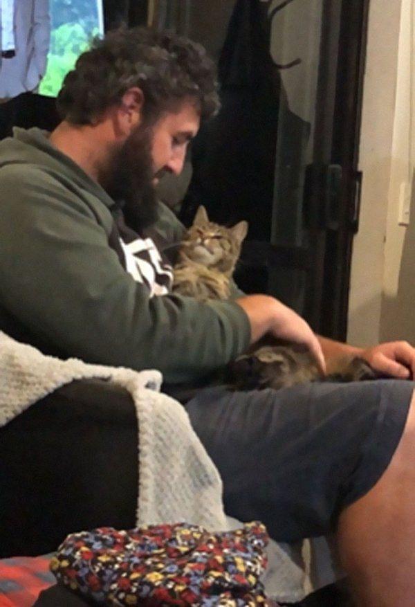 Фотографии кошек и собак, спасённых от бездомной жизни добрыми людьми