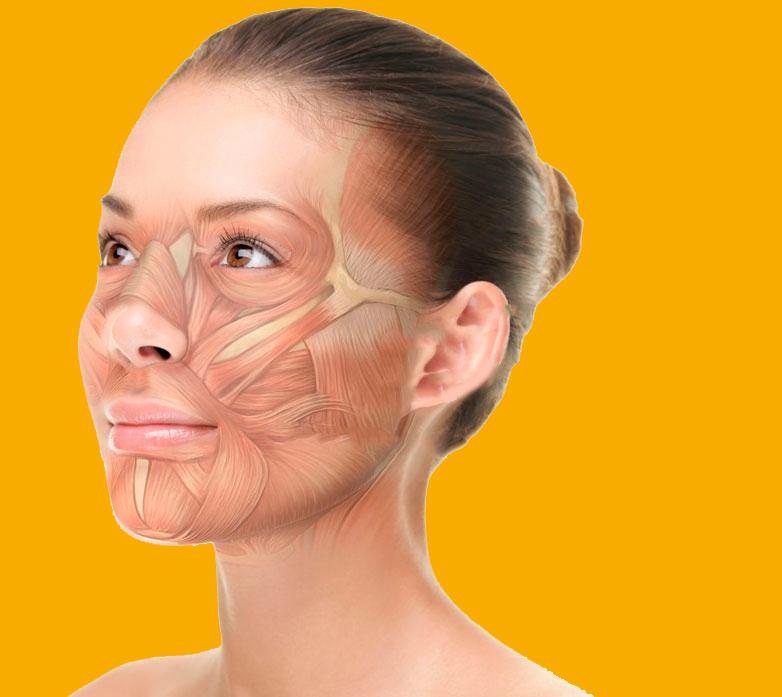 Витамины и добавки для молодости кожи